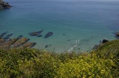 Turkooise Wateren bij Housel-Baai, de Hagedis, Cornwall Stock Foto