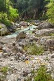 Turkos färgade floden i den Triglav nationalparken, Slovenien arkivbild