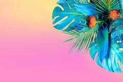 Turkos färgade tätt upp av olika nya tropiska sidor och röda blommor på rosa bakgrund fotografering för bildbyråer