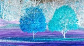 Turkos och lilaabstrakt begrepp av träd fotografering för bildbyråer