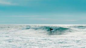 turkos Sikt för låg vinkel av mannen som surfar på havet arkivfoton