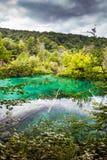 Turkos sjö i träna Plitvice nationalpark, Kroatien arkivbilder