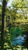 Turkos sjö på Plitvice Kroatien Royaltyfri Fotografi