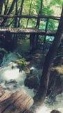 Turkos sjö, vattenfall och bro på Plitvice Kroatien Royaltyfria Foton