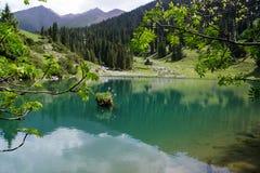 Turkos sjön arkivfoton
