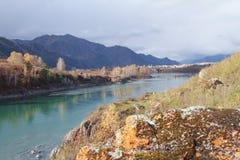 Turkosflod i hösten Arkivfoton