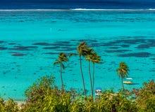 Turkoslagun i franska Polynesien royaltyfria foton