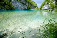 TurkosPlitvice sjöar Arkivbilder
