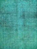 Turkosskärmmodell Arkivbild