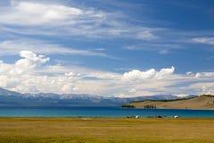 Turkosvatten av Khovsgol sjön Arkivfoto