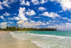Turkosvatten på en tropisk sandig strand med en treeline av bah royaltyfria foton