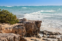 Turks & Caicos Caribbean Island. Rocky coastline in Grand Turk, an island in the Turks & Caicos islands Stock Image