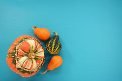 Turks turban squash with orange and green ornamental gourds Stock Image