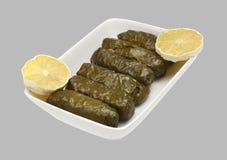 Turks vlees 01 stock fotografie