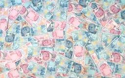 Turkse Lirebankbiljetten (POGING of TL) 100 TL en 200 TL Stock Afbeelding