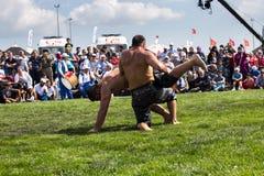 Turkse nationale sportolie die in Turkije worstelen royalty-vrije stock afbeelding