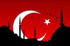 Turkse stijl vector illustratie