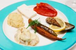 Turkse vissensnacks op plaat Royalty-vrije Stock Foto