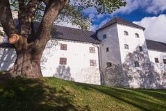 Turku castle in bright sunshine in Finland on a sunny summer day Royalty Free Stock Image