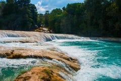 Turkus woda Agua Azul spada, Chiapas, Palenque, Meksyk piękna krajobrazowa siklawa Obrazy Royalty Free