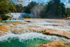 Turkus woda Agua Azul spada, Chiapas, Palenque, Meksyk piękna krajobrazowa siklawa Obrazy Stock