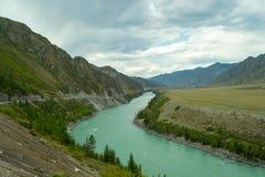 Turkusowa rzeka Katun w górach Altai a obraz stock