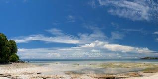 Turkusowego Tropikalnego Polinezyjskiego raju palm beach oceanu kryształu Denna woda Borneo Indonezja Fotografia Stock