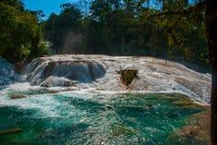 Turkusowoniebieska woda siklawy Agua Azul w Chiapas, Palenque, Meksyk Zdjęcie Stock