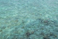 Turkusu wodny tło Maldives obraz royalty free