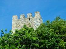 Turm über den Bäumen Lizenzfreie Stockfotos