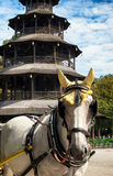 Turm de Chinesischer - munich Foto de Stock Royalty Free