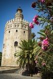 Turm des Goldes durch den Guadalquiver-Fluss in Sevilla Stockfotografie