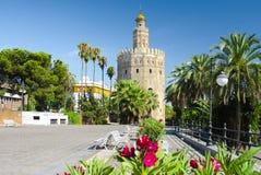 Turm des Goldes in Sevilla Stockbilder