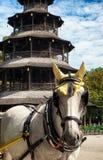 Turm di Chinesischer - Monaco di Baviera Fotografia Stock Libera da Diritti
