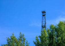 Turm hinter den Bäumen Lizenzfreies Stockbild