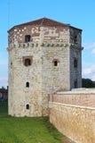Turm Nebojsa Stockbild