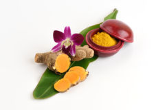 Turmaric (Curcuma longa L.)and powder Stock Image