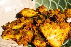 Turmeric ταϊλανδικό γεύμα τροφίμων ψαριών Στοκ εικόνες με δικαίωμα ελεύθερης χρήσης