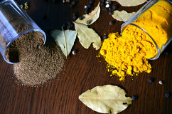 Turmeric and black pepper Royalty Free Stock Photos
