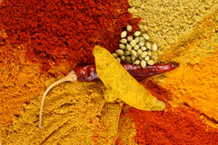 Turmeric coriander and red chili Stock Images