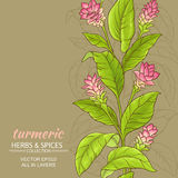 Turmeric flower background. Turmeric flowers vector pattern on color background Stock Photography