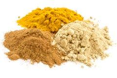 Turmeric, ginger and cinnamon Stock Image