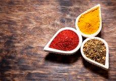 Turmeric powder and chili powde Stock Photography