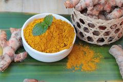 Turmeric powder and fresh root is herb. Royalty Free Stock Image