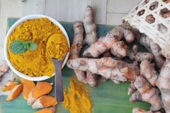 Turmeric powder and fresh root is herb. Royalty Free Stock Photo