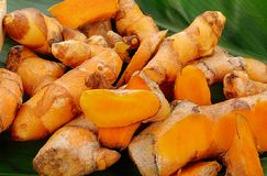 Turmeric powder and fresh turmeric on leave  background. Royalty Free Stock Image