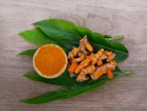 Turmeric powder and fresh turmeric on wooden background. Herb,Asian Royalty Free Stock Image