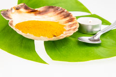 Turmeric powder in seashell and green leaf with spoon isolated o Royalty Free Stock Image