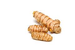 Turmeric rhizomes over white. A bunch of  fresh Turmeric rhizomes at eye level over white, not isolated Stock Photography