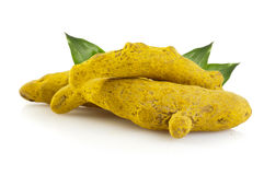 Turmeric root. On white background Royalty Free Stock Photography